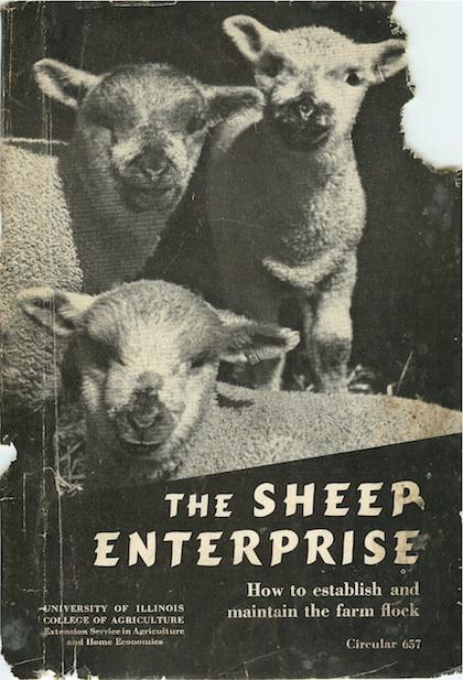 "Cover of ""The Sheep Enterprise"""